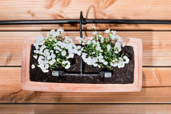Система для полива цветов в горшках